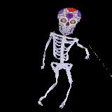 Skeleton Kite 13 ft. Dia De Los Muertos