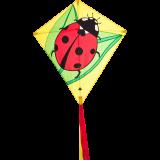 Eddy Ladybug